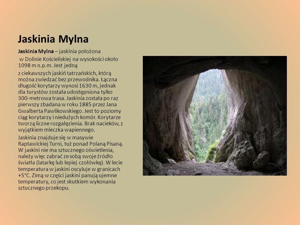 Jaskinia Mylna Jaskinia Mylna – jaskinia położona w Dolinie Kościeliskiej na wysokości około 1098 m n.p.m. Jest jedną z ciekawszych jaskiń tatrzańskic