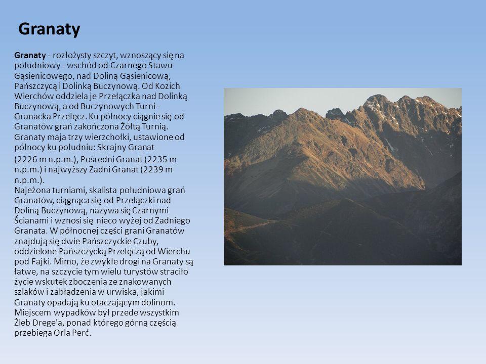 Granaty Granaty - rozłożysty szczyt, wznoszący się na południowy - wschód od Czarnego Stawu Gąsienicowego, nad Doliną Gąsienicową, Pańszczycą i Dolink