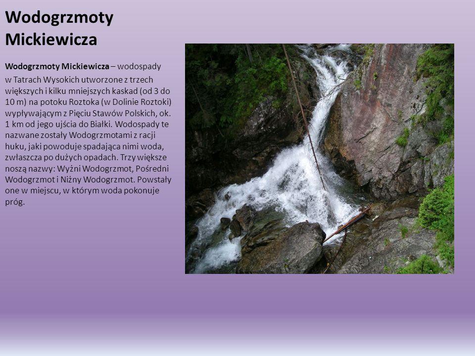 Wodogrzmoty Mickiewicza Wodogrzmoty Mickiewicza – wodospady w Tatrach Wysokich utworzone z trzech większych i kilku mniejszych kaskad (od 3 do 10 m) n