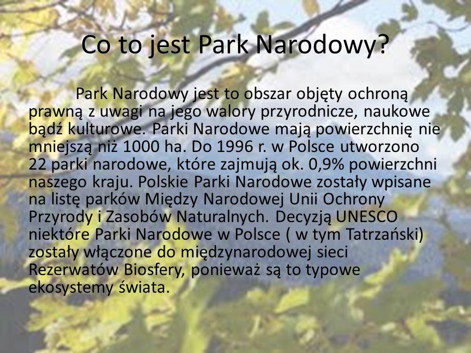 Co to jest Park Narodowy? Park Narodowy jest to obszar objęty ochroną prawną z uwagi na jego walory przyrodnicze, naukowe bądź kulturowe. Parki Narodo