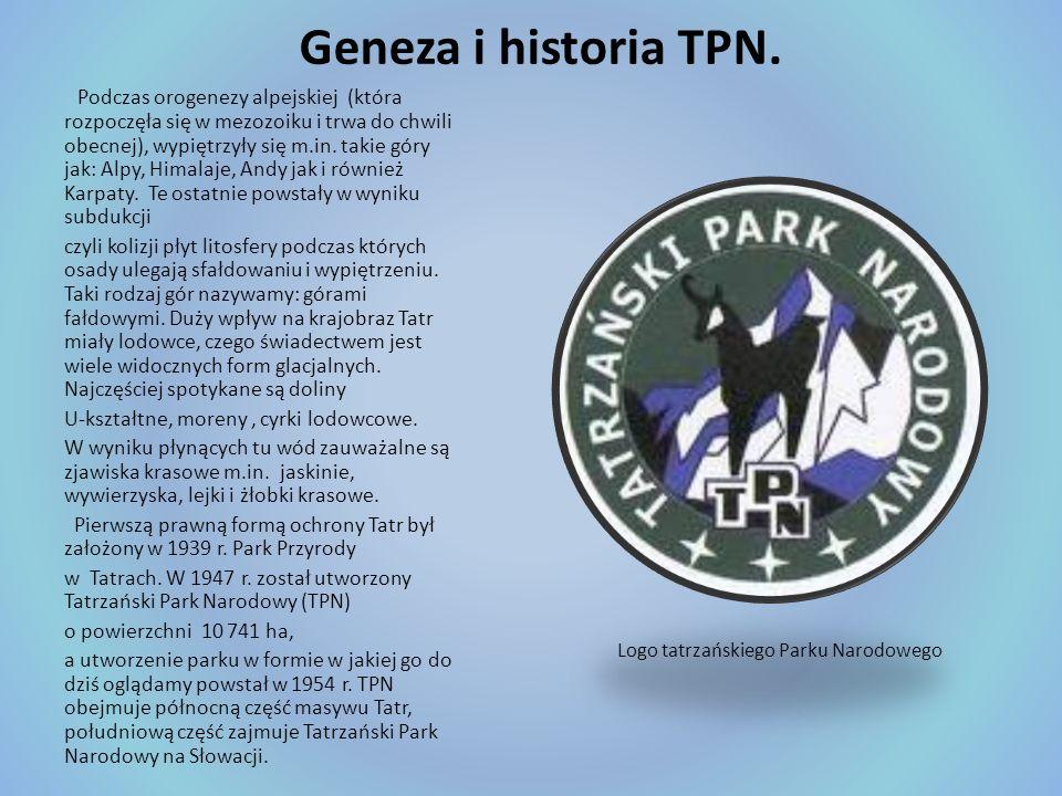 Geneza i historia TPN. Podczas orogenezy alpejskiej (która rozpoczęła się w mezozoiku i trwa do chwili obecnej), wypiętrzyły się m.in. takie góry jak: