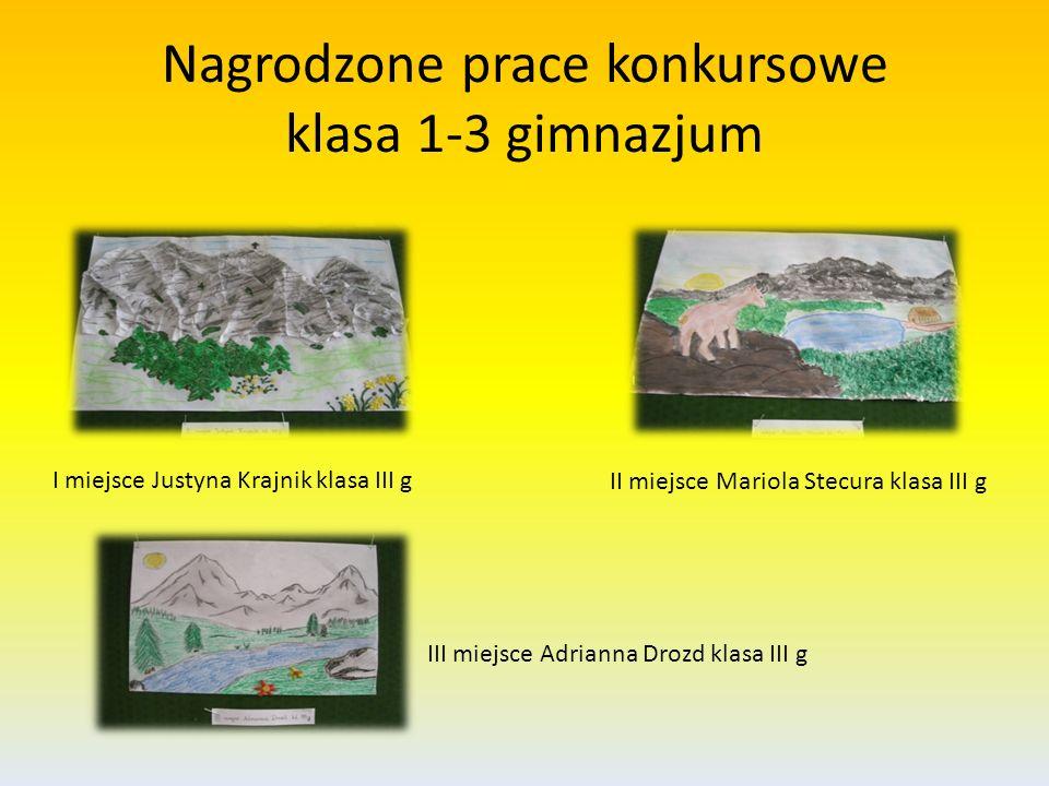 Nagrodzone prace konkursowe klasa 1-3 gimnazjum I miejsce Justyna Krajnik klasa III g II miejsce Mariola Stecura klasa III g III miejsce Adrianna Droz