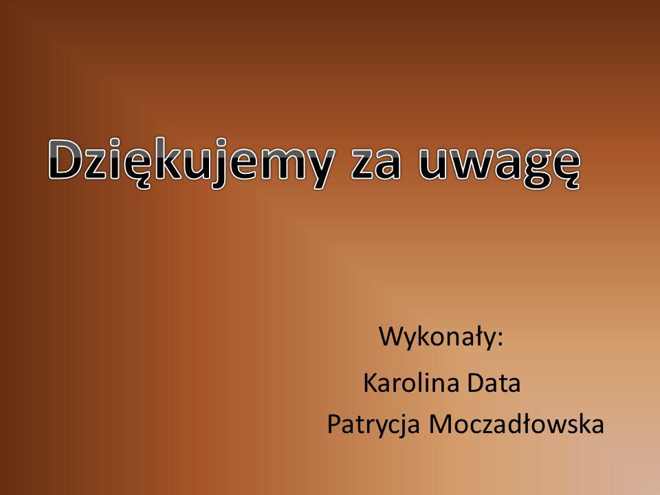 Wykonały: Karolina Data Patrycja Moczadłowska
