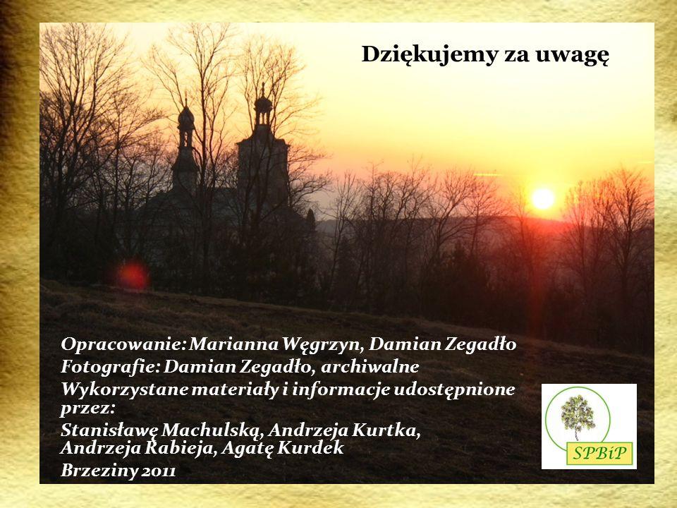 Dziękujemy za uwagę Opracowanie: Marianna Węgrzyn, Damian Zegadło Fotografie: Damian Zegadło, archiwalne Wykorzystane materiały i informacje udostępni
