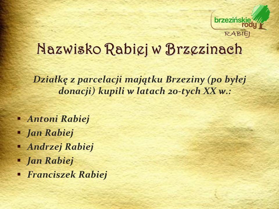 Działkę z parcelacji majątku Brzeziny (po byłej donacji) kupili w latach 20-tych XX w.: Antoni Rabiej Jan Rabiej Andrzej Rabiej Jan Rabiej Franciszek