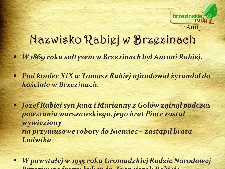 W 1869 roku sołtysem w Brzezinach był Antoni Rabiej. Pod koniec XIX w Tomasz Rabiej ufundował żyrandol do kościoła w Brzezinach. Józef Rabiej syn Jana