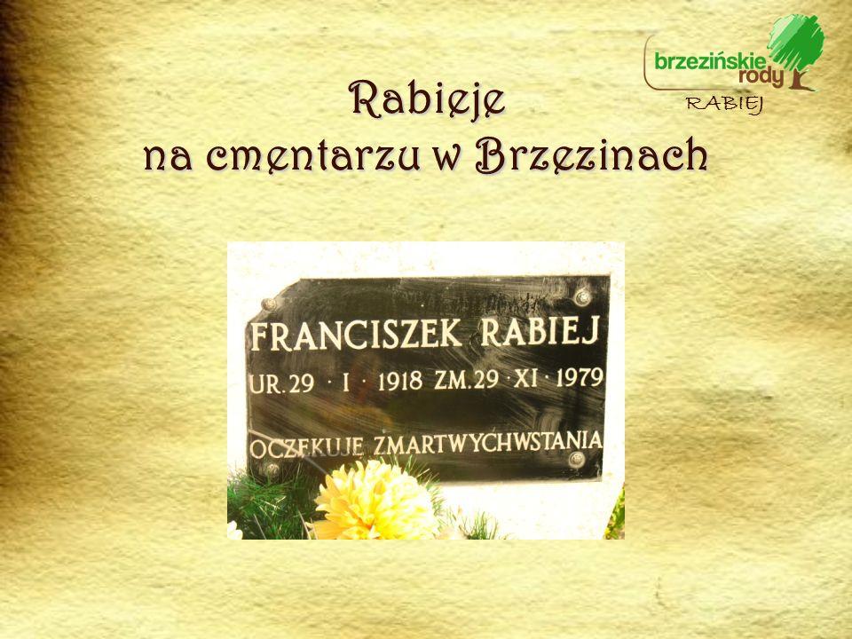 Rabieje na cmentarzu w Brzezinach RABIEJ