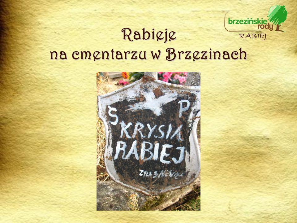 RABIEJ Rabieje na cmentarzu w Brzezinach
