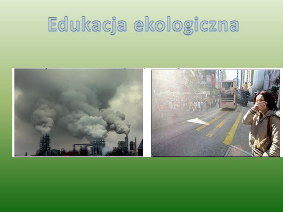 Najpoważniejszymi skutkami zanieczyszczenia powietrza są: efekt cieplarniany, dziura ozonowa, smog i kwaśne deszcze. W celu zmniejszenia emisji zaniec
