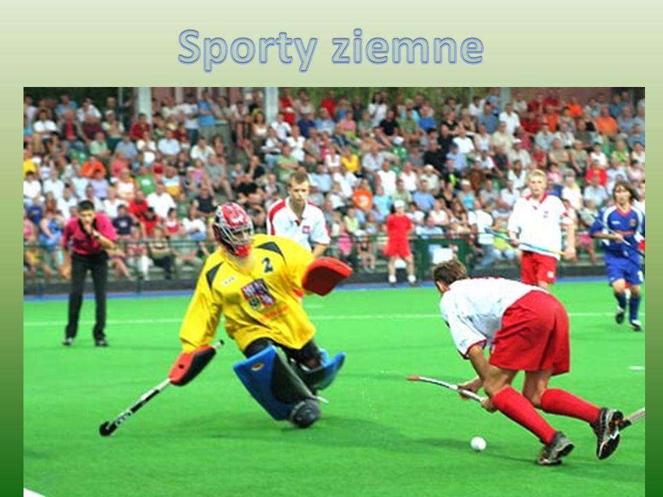 Hokej na trawie zespołowa gra sportowa.Mecz rozgrywany jest przez dwie drużyny po 11 graczy (+5 rezerwowych).
