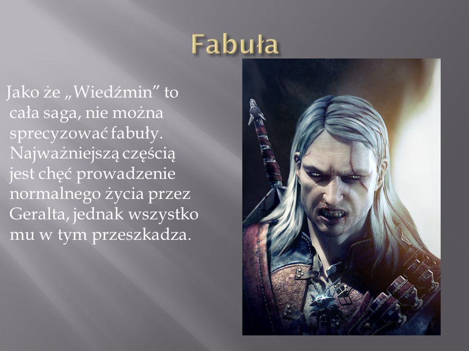 Jako że Wiedźmin to cała saga, nie można sprecyzować fabuły. Najważniejszą częścią jest chęć prowadzenie normalnego życia przez Geralta, jednak wszyst