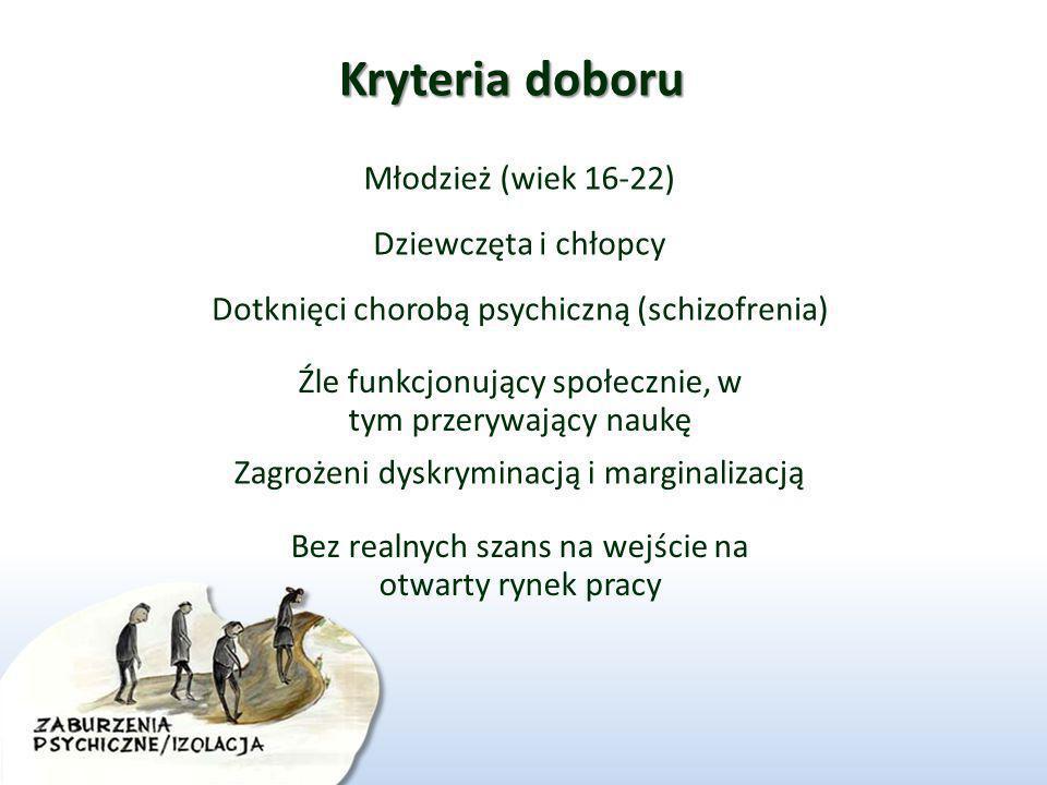 Kryteria doboru Młodzież (wiek 16-22) Dziewczęta i chłopcy Dotknięci chorobą psychiczną (schizofrenia) Źle funkcjonujący społecznie, w tym przerywając