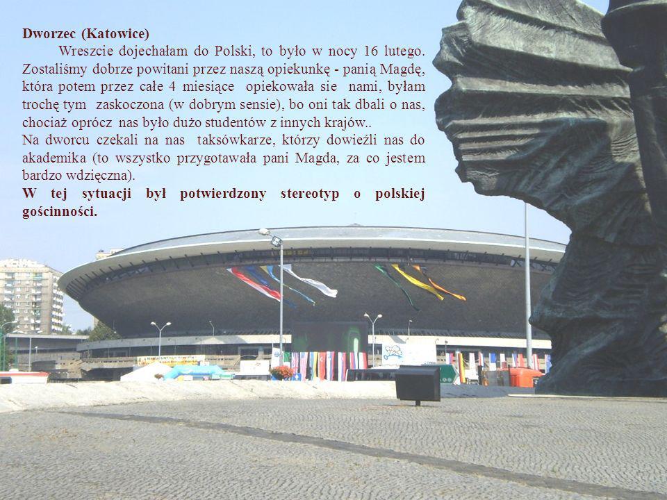 Dworzec (Katowice) Wreszcie dojechałam do Polski, to było w nocy 16 lutego. Zostaliśmy dobrze powitani przez naszą opiekunkę - panią Magdę, która pote