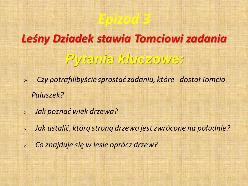 Epizod 3 Pytania kluczowe: Czy potrafilibyście sprostać zadaniu, które dostał Tomcio Paluszek? Jak poznać wiek drzewa? Jak ustalić, którą stroną drzew