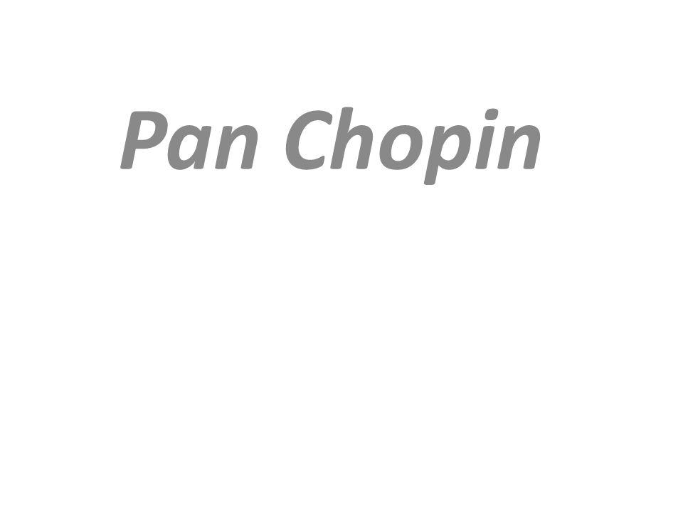 Chopin urodził się w jednej z dworskich oficyn Kaspra Skarbka, w której mieszkała rodzina Mikołaja i Justyny.