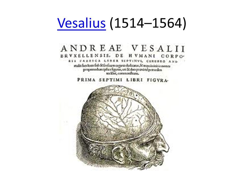 VesaliusVesalius (1514–1564)