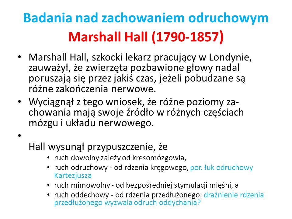 Badania nad zachowaniem odruchowym Marshall Hall (1790-1857 ) Marshall Hall, szkocki lekarz pracujący w Londynie, zauważył, że zwierzęta pozbawione gł