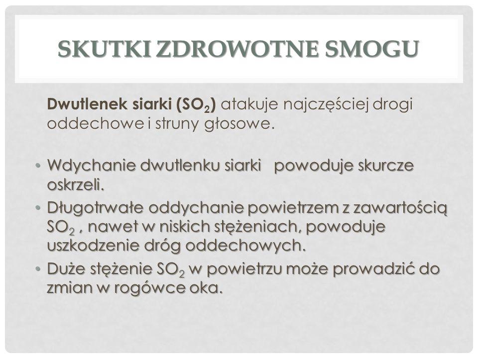 Jan Orgelbrand Zast ę pca G ł ównego Inspektora Sanitarnego DZIĘKUJĘ ZA UWAGĘ