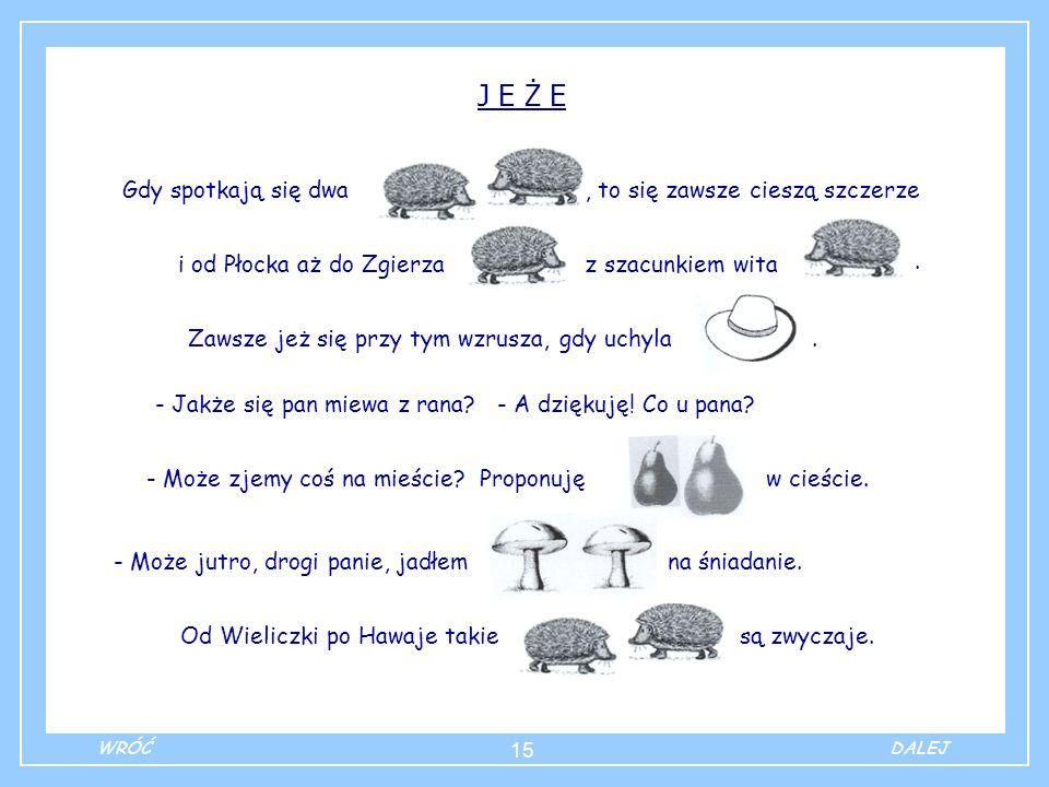15 J E Ż E Gdy spotkają się dwa, to się zawsze cieszą szczerze i od Płocka aż do Zgierza z szacunkiem wita Zawsze jeż się przy tym wzrusza, gdy uchyla - Jakże się pan miewa z rana.