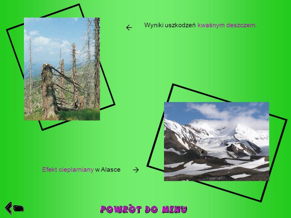 Wyniki uszkodzeń kwaśnym deszczem. Efekt cieplarniany w Alasce