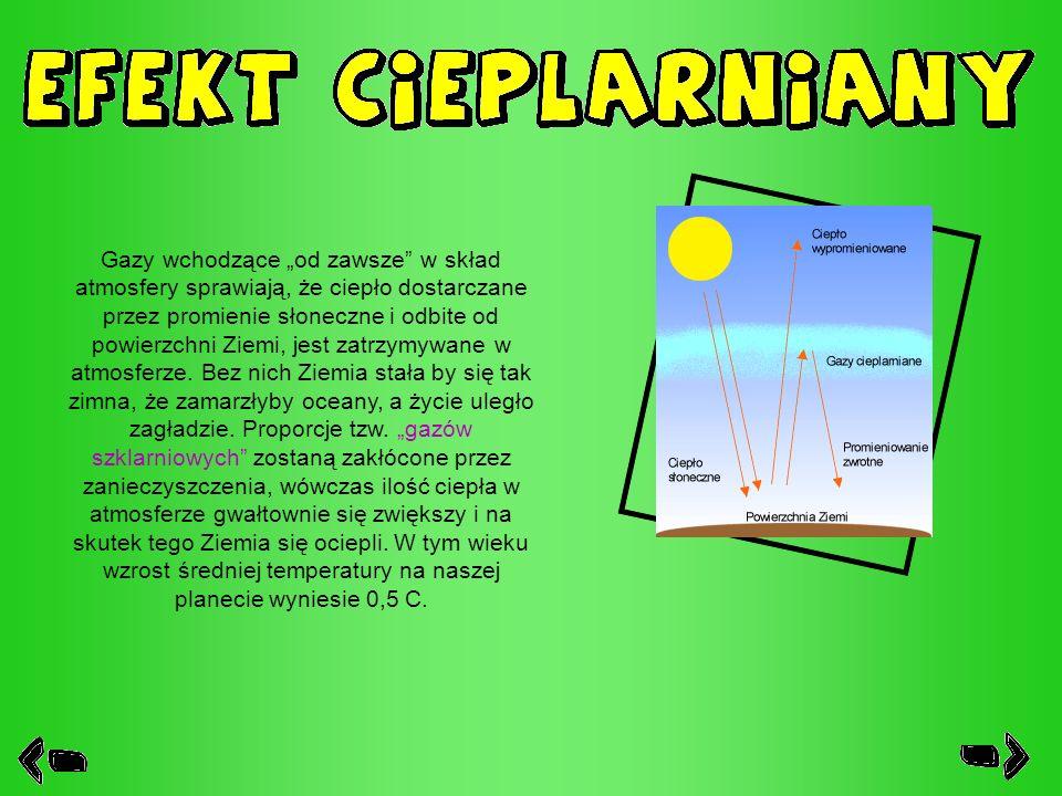 Gazy wchodzące od zawsze w skład atmosfery sprawiają, że ciepło dostarczane przez promienie słoneczne i odbite od powierzchni Ziemi, jest zatrzymywane