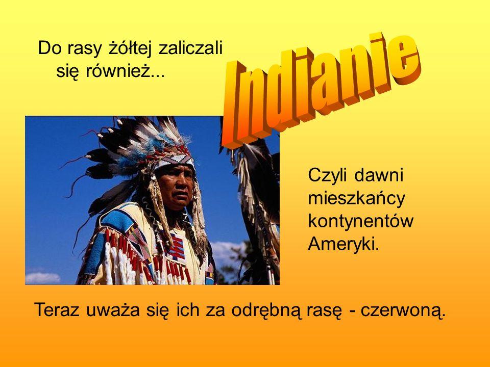 Do rasy żółtej zaliczali się również... Czyli dawni mieszkańcy kontynentów Ameryki. Teraz uważa się ich za odrębną rasę - czerwoną.