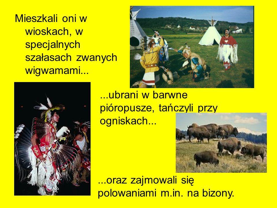 Mieszkali oni w wioskach, w specjalnych szałasach zwanych wigwamami......ubrani w barwne pióropusze, tańczyli przy ogniskach......oraz zajmowali się p