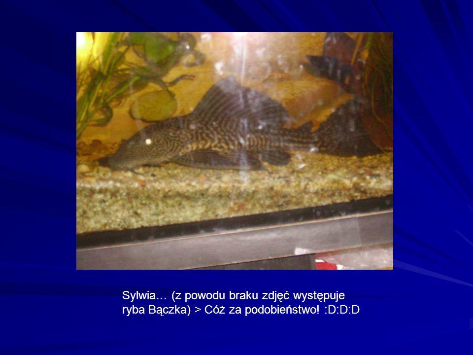 Sylwia… (z powodu braku zdjęć występuje ryba Bączka) > Cóż za podobieństwo! :D:D:D