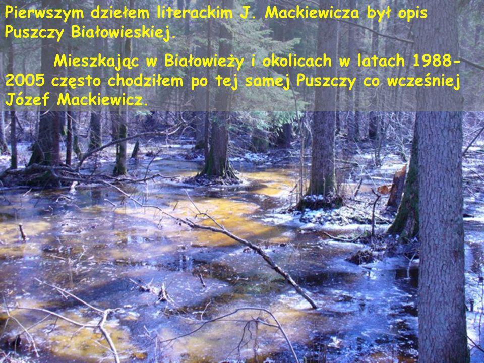 Pierwszym dziełem literackim J. Mackiewicza był opis Puszczy Białowieskiej. Mieszkając w Białowieży i okolicach w latach 1988- 2005 często chodziłem p