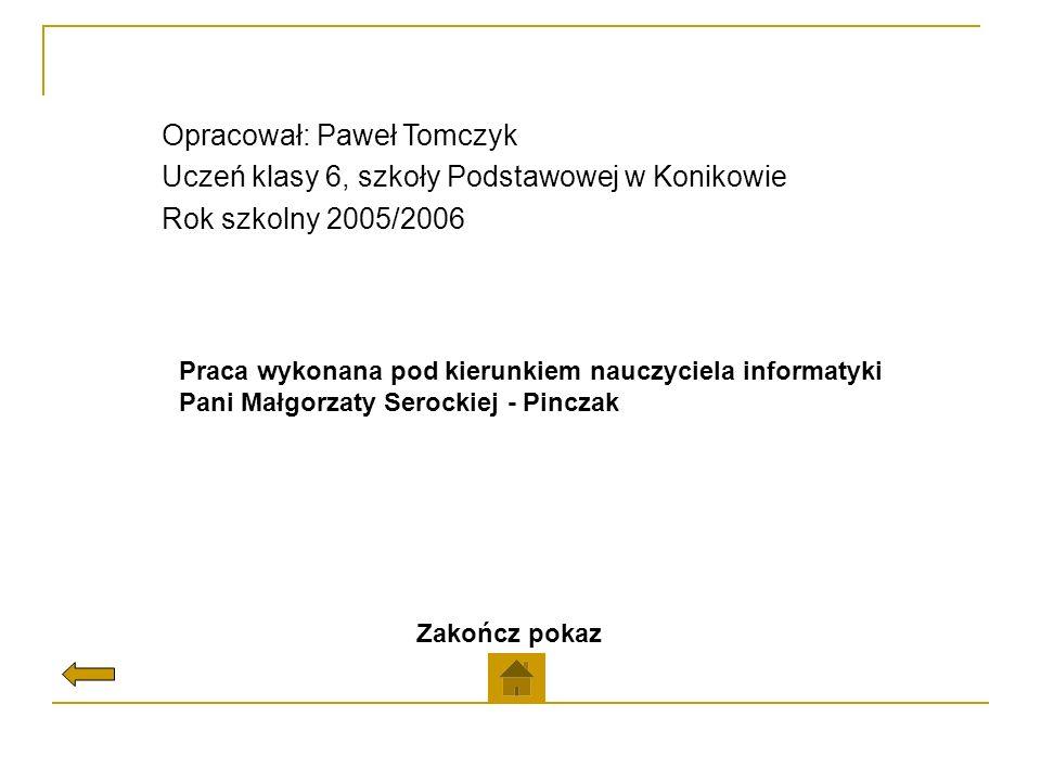 Opracował: Paweł Tomczyk Uczeń klasy 6, szkoły Podstawowej w Konikowie Rok szkolny 2005/2006 Praca wykonana pod kierunkiem nauczyciela informatyki Pan