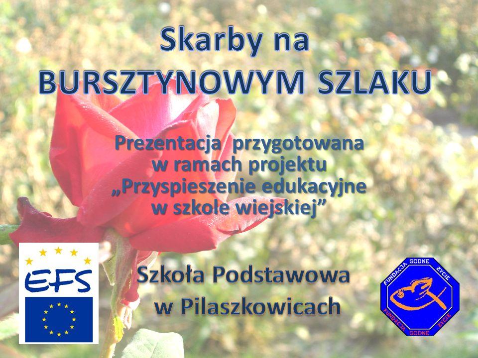 Zabytkowy kościół w Pilaszkowicach Zabytkowy kościół drewniany przeniesiony z Lublina z ul.