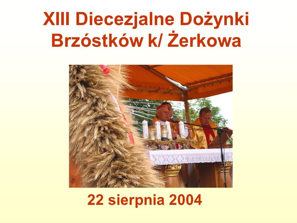 Parę tysięcy osób uczestniczyło w dożynkach diecezjalnych, które odbyły się w niedzielę 22 sierpnia 2004 roku w Brzóstkowie (dekanat żerkowski).
