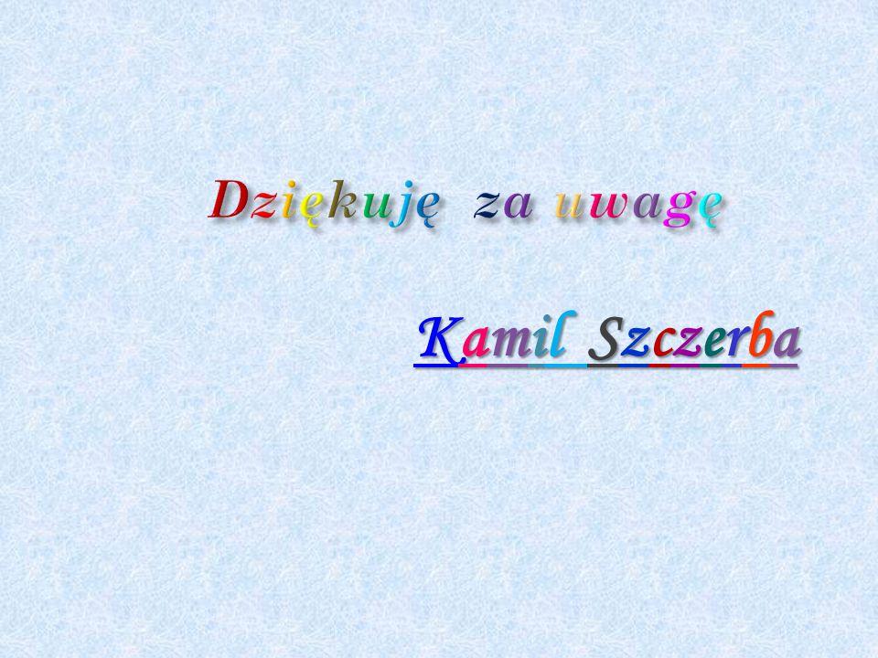 Kamil Szczerba
