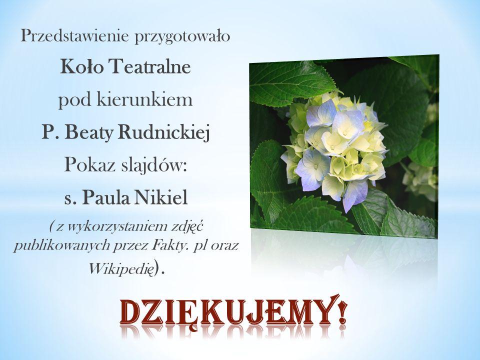 Przedstawienie przygotowa ł o Ko ł o Teatralne pod kierunkiem P. Beaty Rudnickiej Pokaz slajdów: s. Paula Nikiel ( z wykorzystaniem zdj ęć publikowany