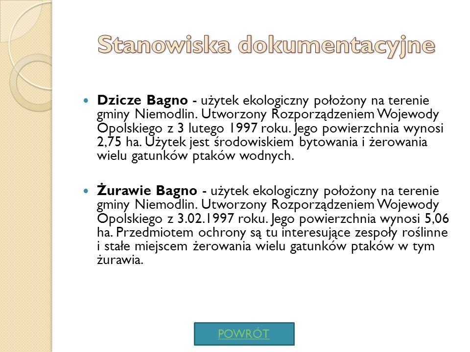 Zespół Przyrodniczo-Krajobrazowy Lipno - Utworzony mocą uchwały Rady Miejskiej miasta Niemodlin w 1998 r.