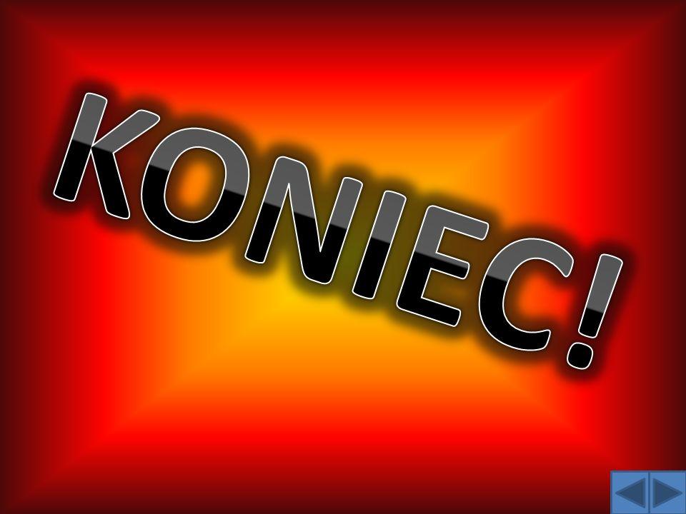 Prace wykonali uczniowie gimnazjum nr 2 w Sochaczewie imienia Władysława Jagiełło z oddziałami integracyjnymi i sportowymi z klasy 1 C : Hubert Binien