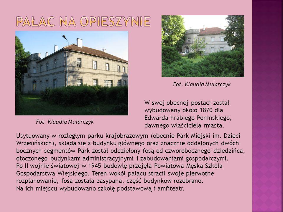 Usytuowany w rozległym parku krajobrazowym (obecnie Park Miejski im. Dzieci Wrzesińskich), składa się z budynku głównego oraz znacznie oddalonych dwóc