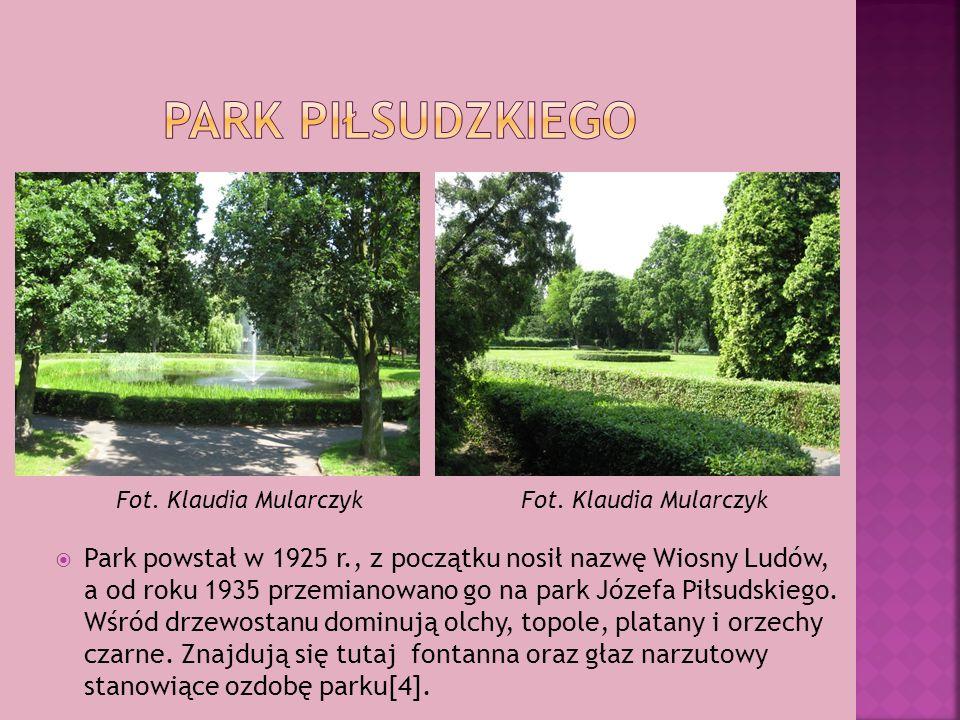 Park powstał w 1925 r., z początku nosił nazwę Wiosny Ludów, a od roku 1935 przemianowano go na park Józefa Piłsudskiego. Wśród drzewostanu dominują o