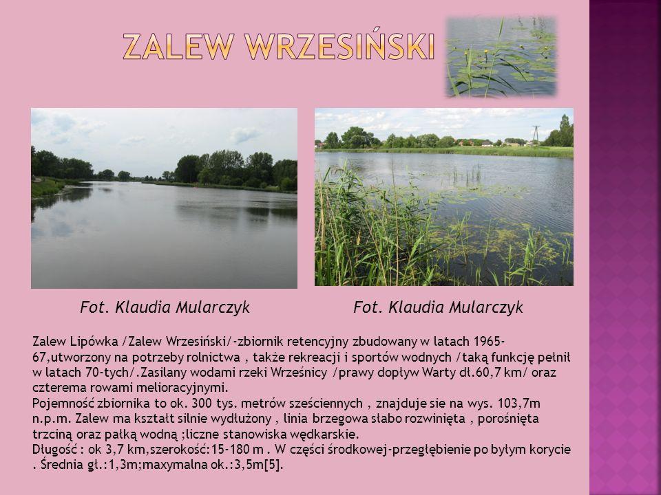 Zalew Lipówka /Zalew Wrzesiński/-zbiornik retencyjny zbudowany w latach 1965- 67,utworzony na potrzeby rolnictwa, także rekreacji i sportów wodnych /t