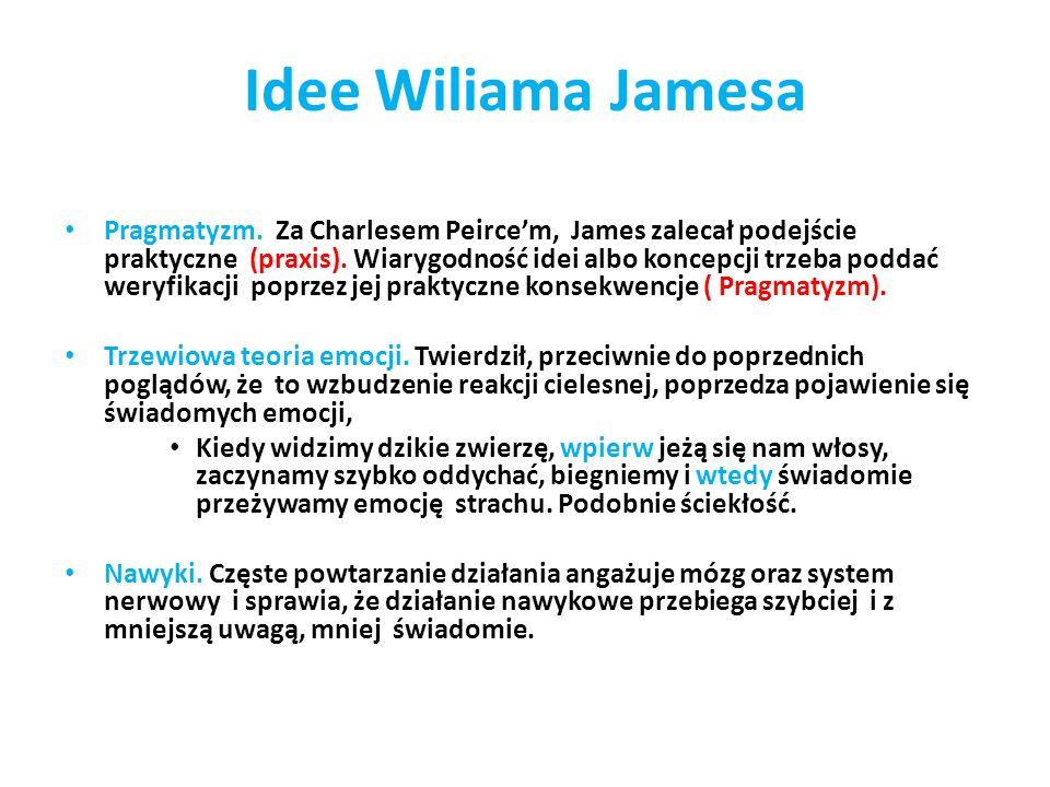 Idee Wiliama Jamesa Pragmatyzm. Za Charlesem Peircem, James zalecał podejście praktyczne (praxis). Wiarygodność idei albo koncepcji trzeba poddać wery