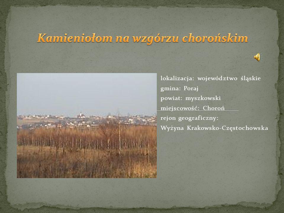 lokalizacja: województwo śląskie gmina: Poraj powiat: myszkowski miejscowość: Choroń rejon geograficzny: Wyżyna Krakowsko-Częstochowska