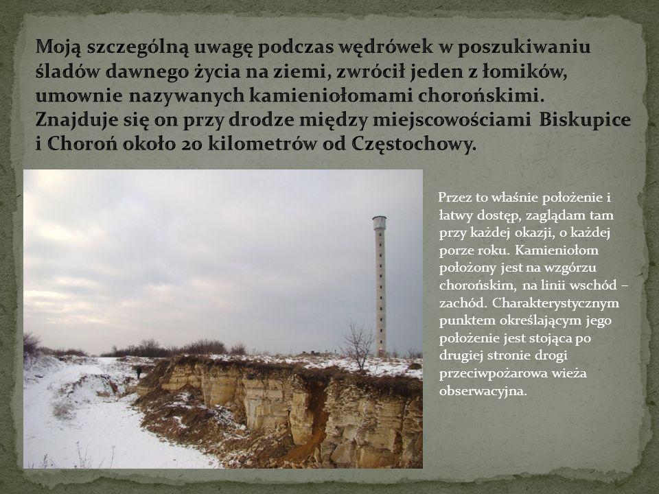 - pomysł i przygotowanie prezentacji: Andrzej Rykała - zdjęcia okazów i kolekcji rodzinnej: Cezary Karoń.