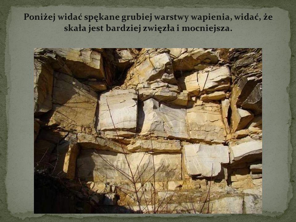 Są to konkrecje krzemienne, swoiste ozdoby skał o fantazyjnych kształtach powstające w wyniku wtórnej koncentracji krzemionki pochodzącej z części organizmów zasiedlających dna morza.