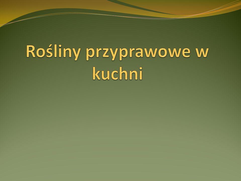 Bazylia pospolita Bazylia jest to jednoroczna roślina o mocno aromatycznej woni, silnie rozgałęziona łodyga, wysokość do 50 cm, liście owalne, kruche, naprzeciwległe,zielone.