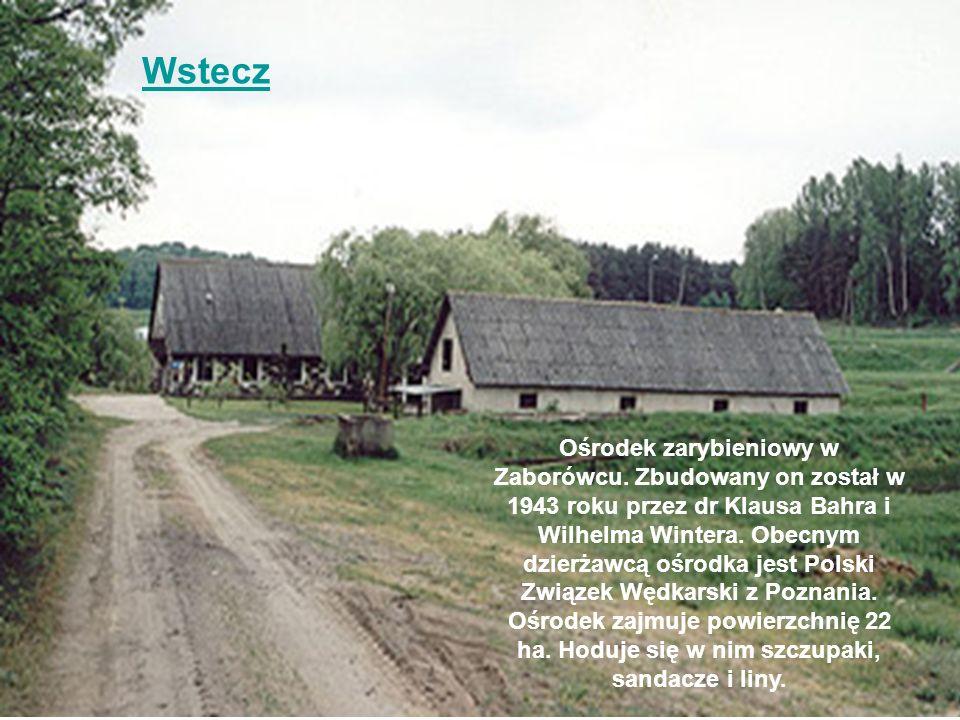 Wstecz Ośrodek zarybieniowy w Zaborówcu. Zbudowany on został w 1943 roku przez dr Klausa Bahra i Wilhelma Wintera. Obecnym dzierżawcą ośrodka jest Pol