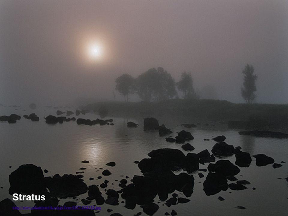 http://www.adamlawnik.art.pl/foto/0507-03833P.jpg