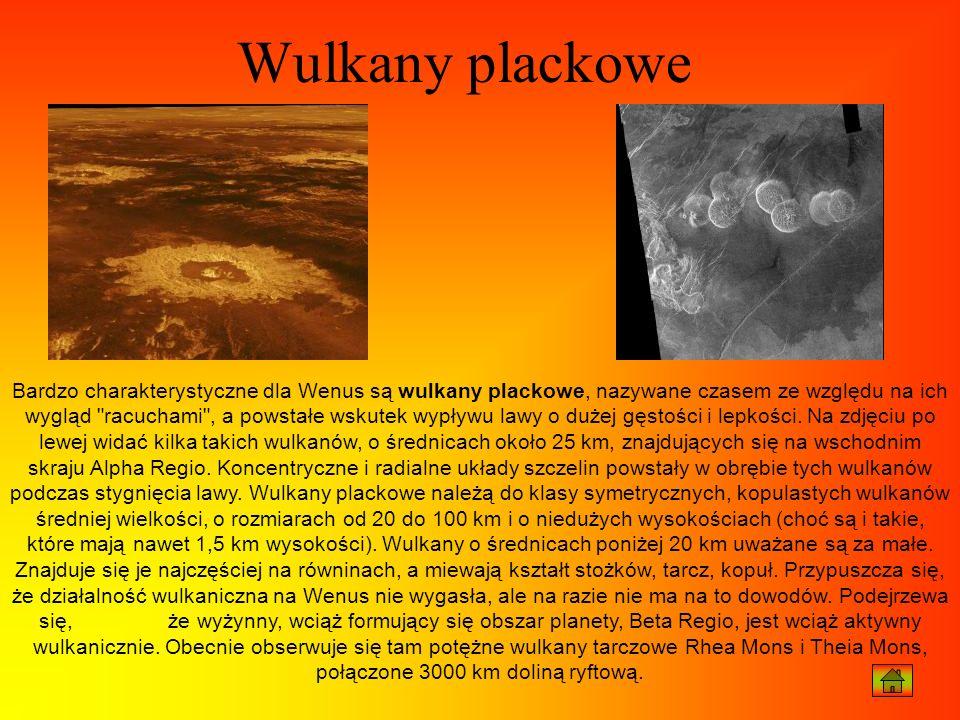 Bardzo charakterystyczne dla Wenus są wulkany plackowe, nazywane czasem ze względu na ich wygląd