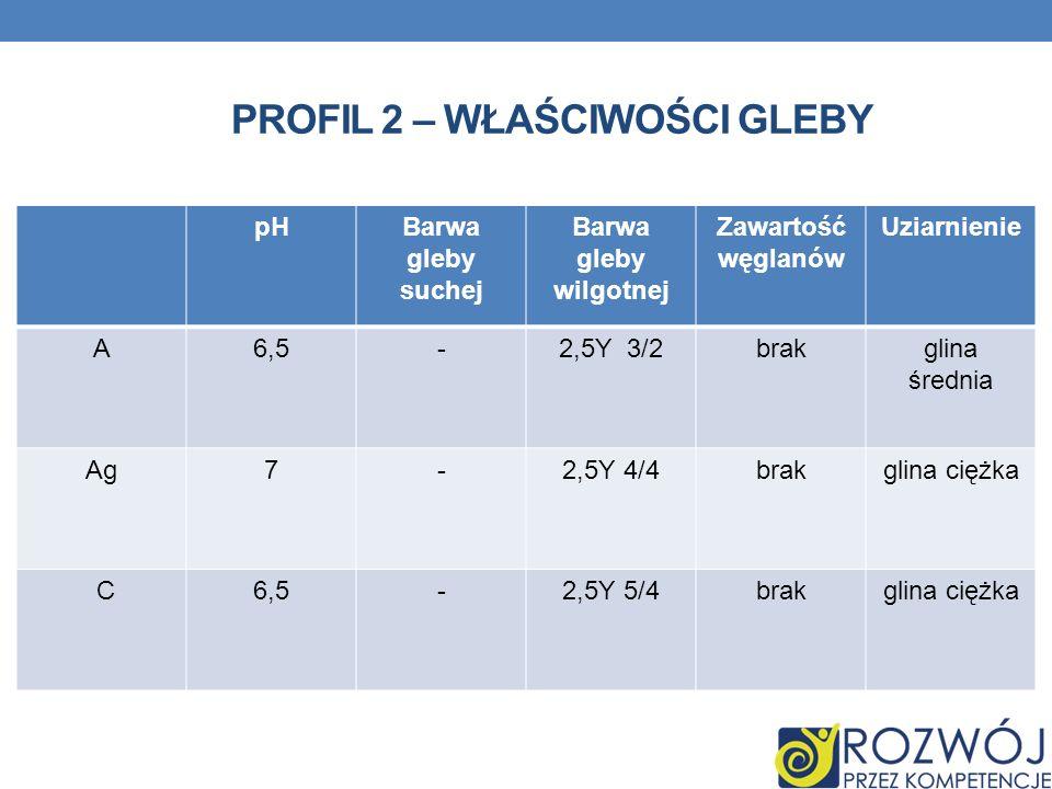 PROFIL 2 – WŁAŚCIWOŚCI GLEBY pHBarwa gleby suchej Barwa gleby wilgotnej Zawartość węglanów Uziarnienie A6,5-2,5Y 3/2brakglina średnia Ag7-2,5Y 4/4brak