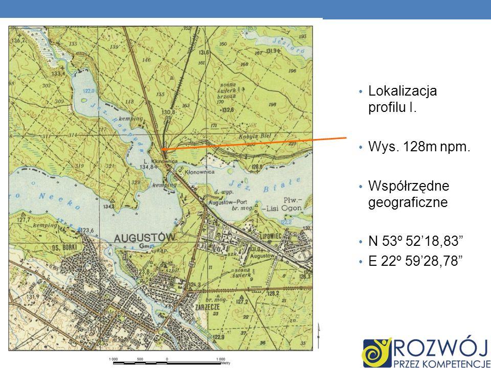Lokalizacja profilu I. Wys. 128m npm. Współrzędne geograficzne N 53º 5218,83 E 22º 5928,78