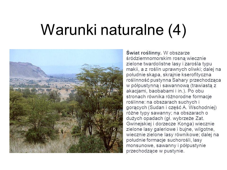 Warunki naturalne (4) Świat roślinny. W obszarze śródziemnomorskim rosną wiecznie zielone twardolistne lasy i zarośla typu makii, a z roślin uprawnych